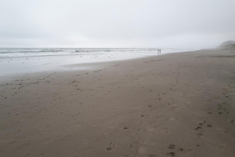ocean beach quarantine 1161845-8-20.jpg