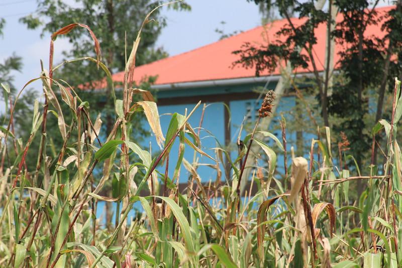 Kenya Part1 '15 1070.JPG