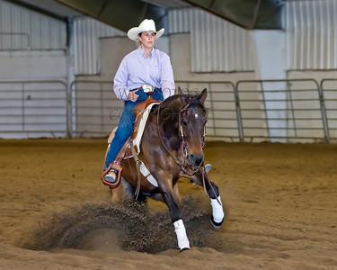 Rimview Classic Horse Reining 2014