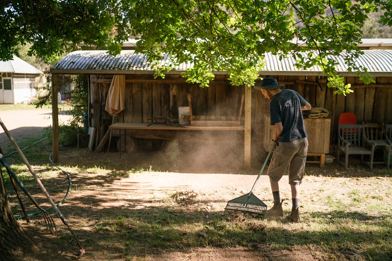 Man with a Disability Raking on a Farm