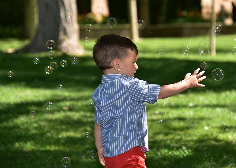 NEA_2414-7x5-Tri-Bubbles.jpg