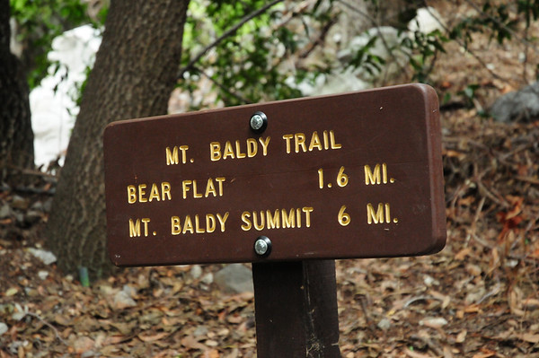 Mt. Baldy April 28, 2010