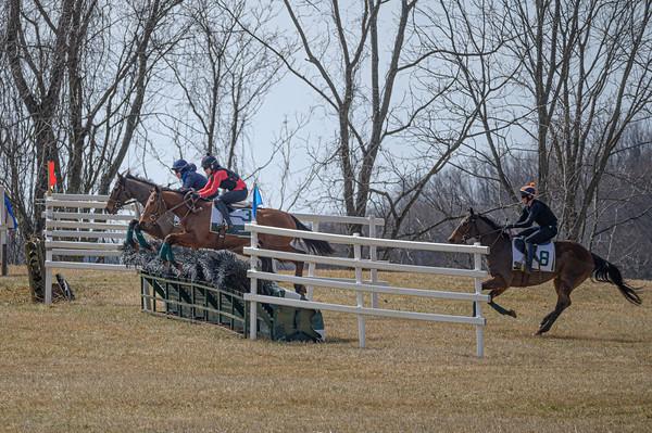 Schooling Race 2