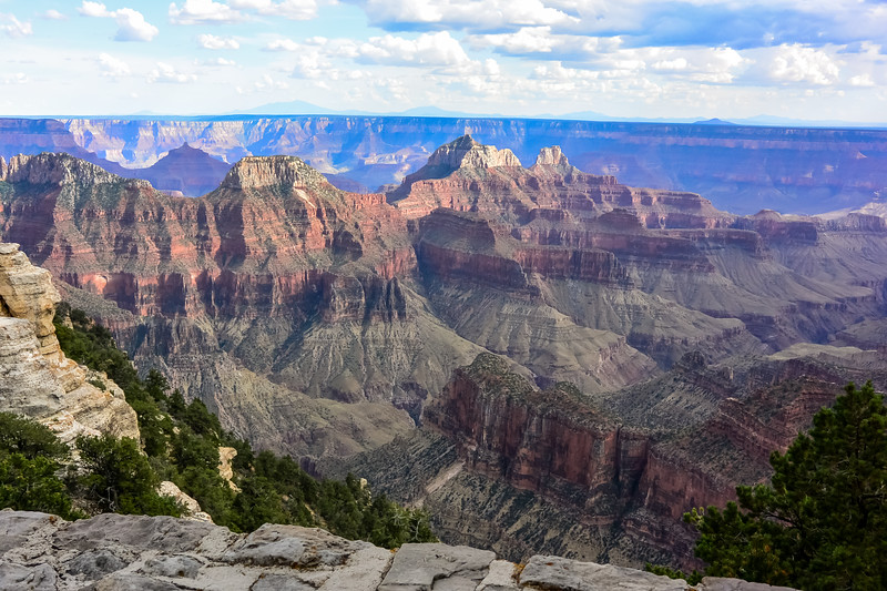 2019 Grand Canyon-244.jpg