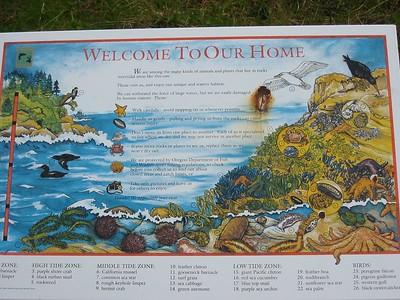 2003 Oregon Trip