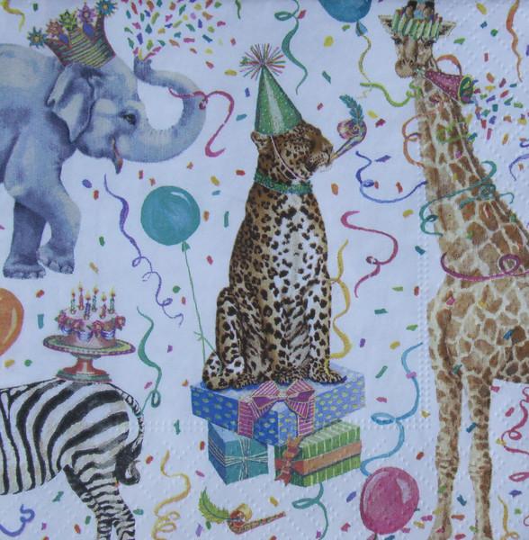 bella-safari-5556.jpg