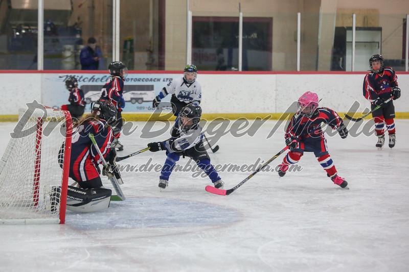 Blizzard Hockey 111719 7190.jpg
