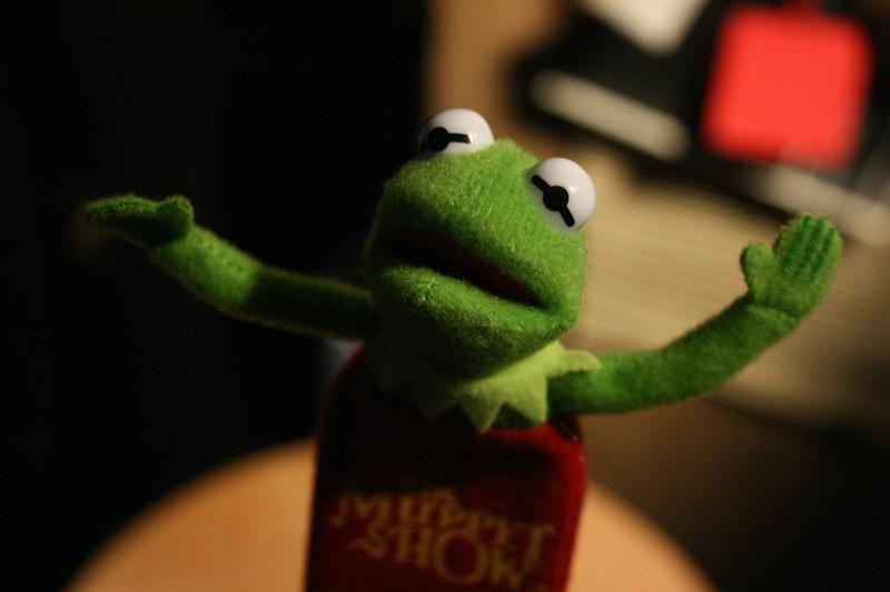 Kermit _03.jpg
