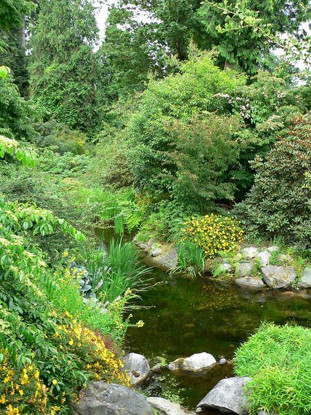 450px-UBC_Botanical_Garden_water.jpg