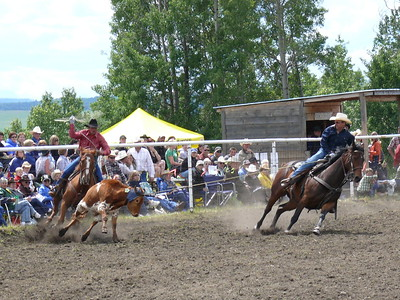 Team Roping Section 2