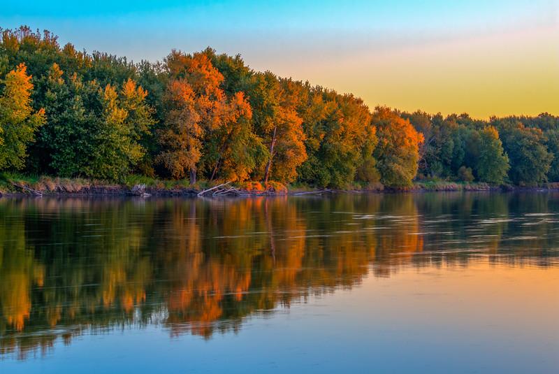 Autumn color starting along the Cedar River.