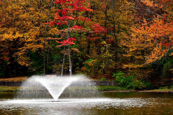 10/16/2019 Mike Orazzi | Staff Fall foliage in Bristol's Page Park.