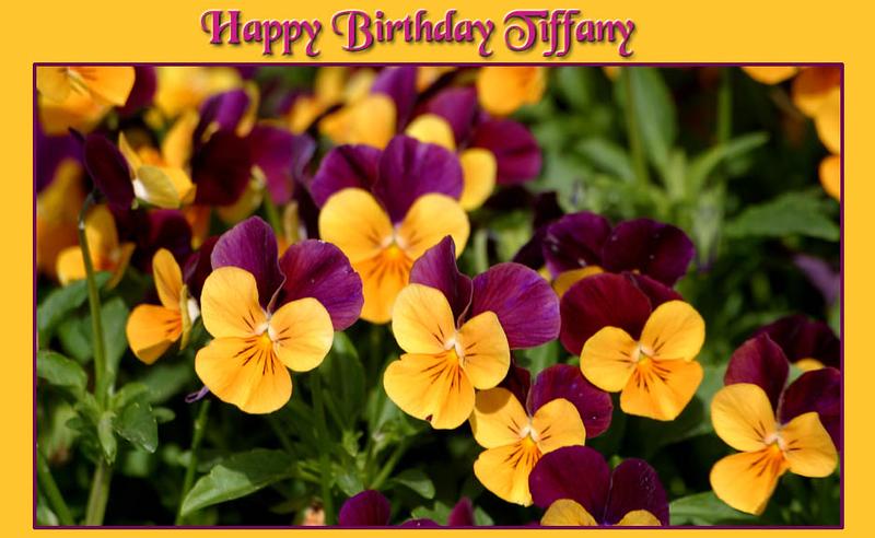 Happy Birthday Tiffany.jpg
