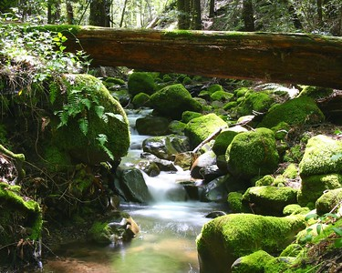 Waterfalls - Sanbord Park, CA