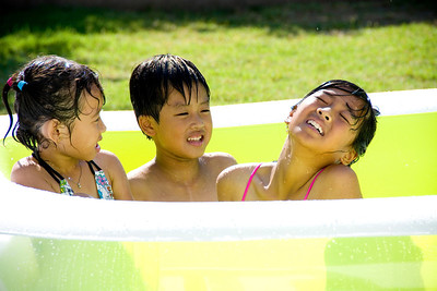 Backyard Pool: July 9, 2013