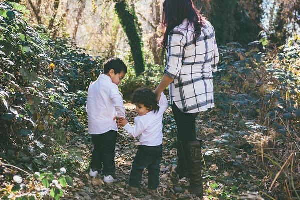 Bristina Family Mommy & The Boys Mini Session