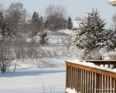 Christmas 2009 Snow Scenes