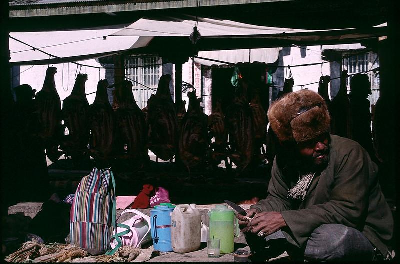 Tibet_Shanghai1_111.jpg