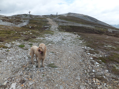 Return to the Cairnwell three.