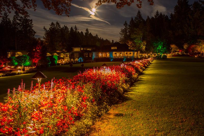 Butchers Gardens Under a Full Moon
