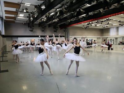 Swan Lake rehearsals (video files)