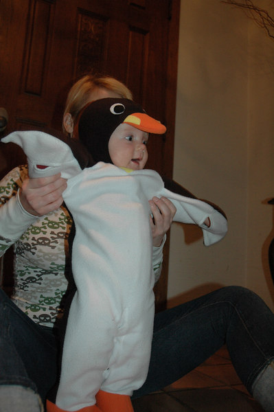 March of the Penguin 2 041.jpg