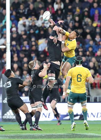 27 Aug Bledisloe Cup All Blacks (29) v Australia (9)