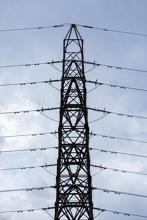 Power Line Trellis