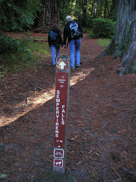 Linda and Paul head up the trail towards Sempervirens Falls.