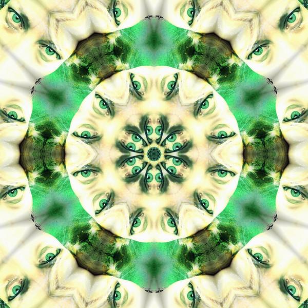 image%3A61382_mirror4.jpg