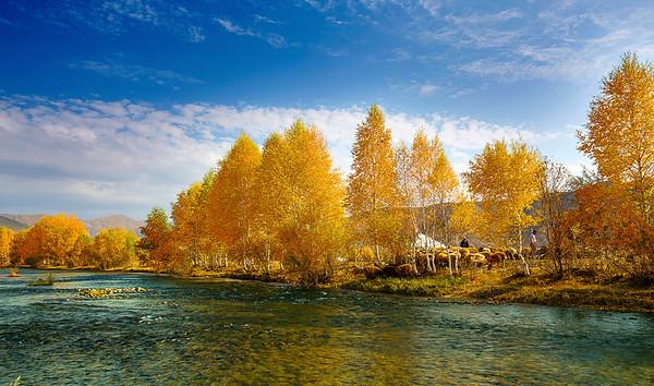 China, Xinjiang, Altay, Koktokay,  Demon City, Fall Colors, 新疆,  可可托海,魔鬼城,  阿勒泰, 秋色