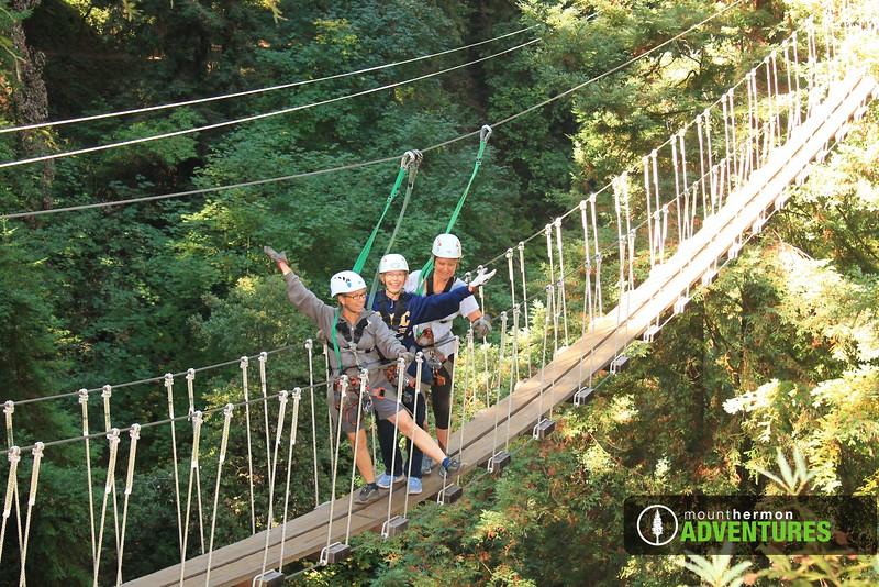 redwood_bridge_1473445921269.jpg