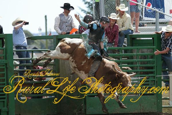 Tillamook  Rodeo 2014