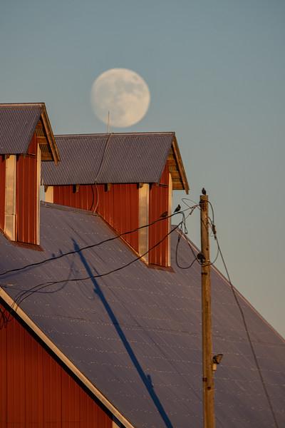Schultz Barn