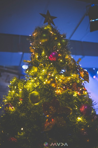 PIC x MUDA Christmas Celebration 20180129.jpg
