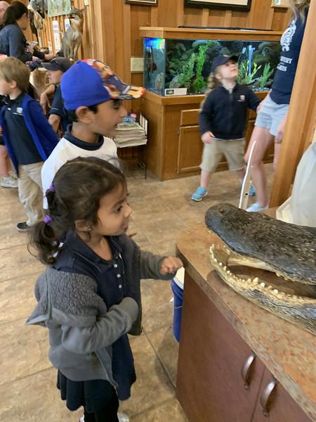JK Field Trip to Crystal Springs Preserves 2020