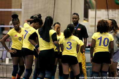 2014 Volleyball Festival Action