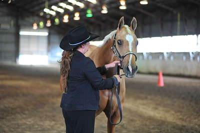 2014 Equestrians