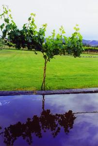 2002-06 Winery