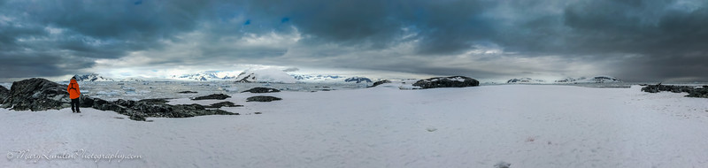 Antarctic-28