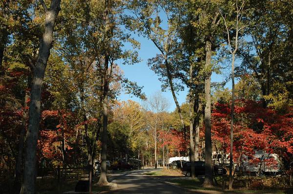 Journal Site 48: Withrow Springs State Park, Huntsville, Arkansas  -  October 22, 2006