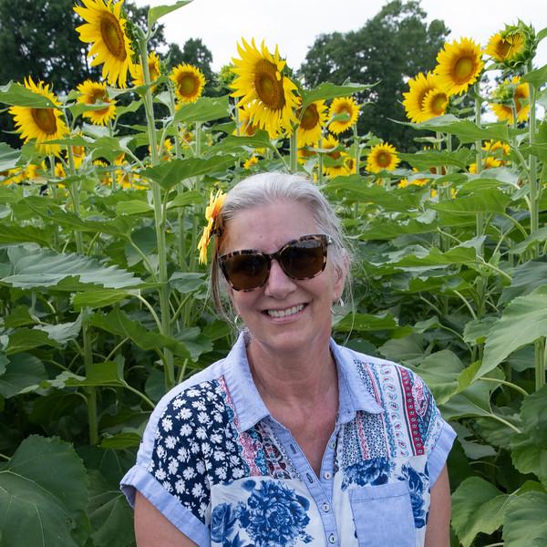 Sunflower Fields-15.jpg