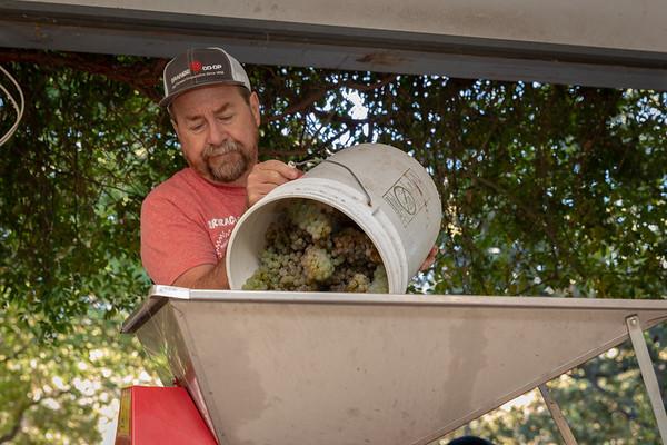 Making Wine in rural Ashland, Oregon