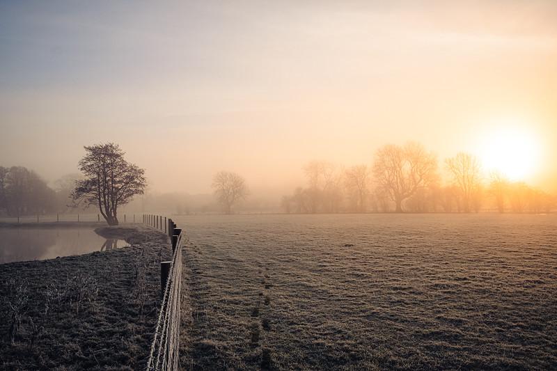 A frosty start (4 of 20).jpg