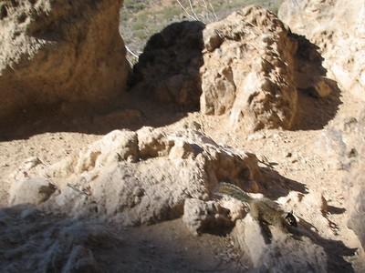 2004-02-AZ-Wind-Cave-Hike