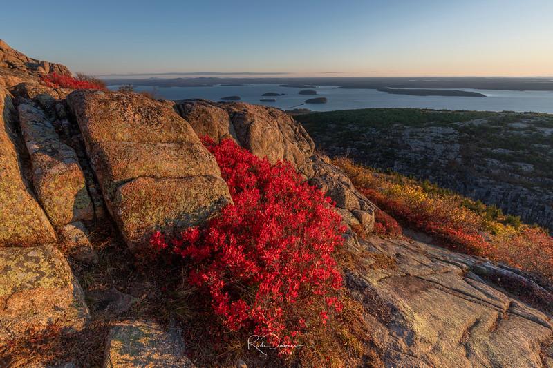 2019_10_Acadia20191019-_A5A0311_Luminar2018-edit.jpg