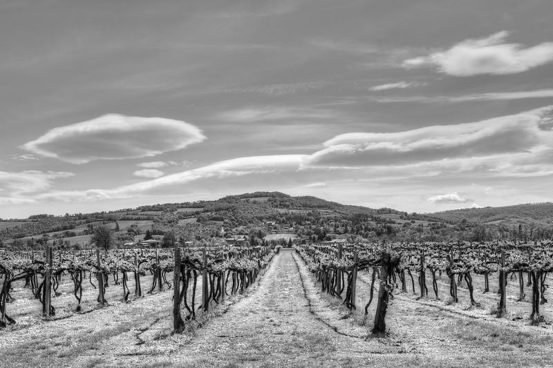 Hills - Albinea, Reggio Emilia, Italy - April 25, 2012