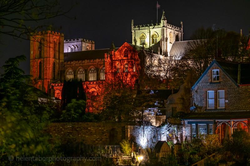 Ripon Cathedral illuminated-28.jpg