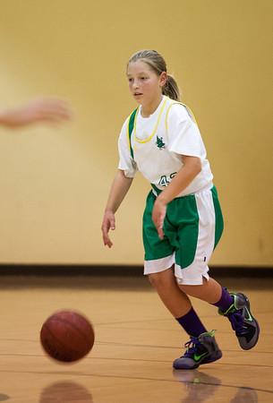 Basketball (JV Green) vs. International   Jan. 17, 2014