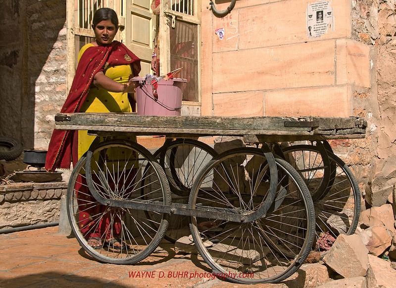 India2010-0209A-115A.jpg